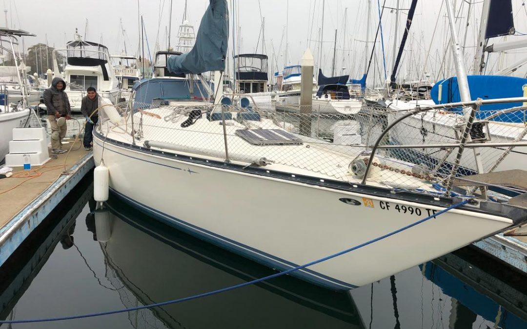 Seasonal boat tips and boat cleaning services in Alameda, Oakland and Eastbay